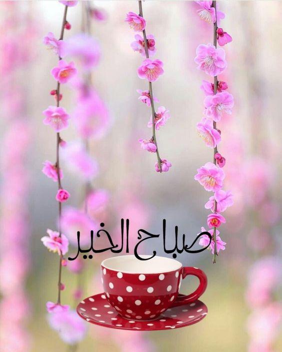 حالات صباح الخير حبيبي مع أحلى صور الوسط