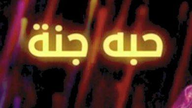 Photo of كلمات أغنية حبه جنة – شيرين عبد الوهاب مكتوبة