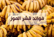 Photo of ماهي فوائد قشر الموز