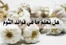 Photo of ماهي فائدة الثوم