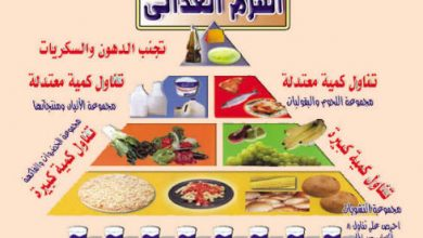 Photo of مطويات عن الفواكه