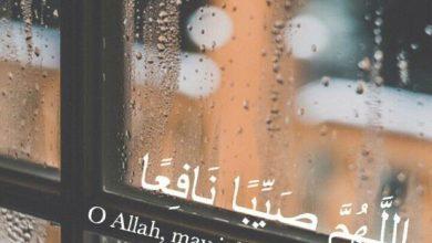 Photo of دعاء نزول المطر