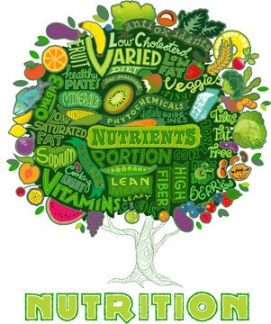 ماهي أهمية التغذية