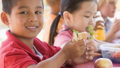 Photo of لزيادة تركيز طفلك أثناء الدراسة أبدئي بتلك الأطعمة