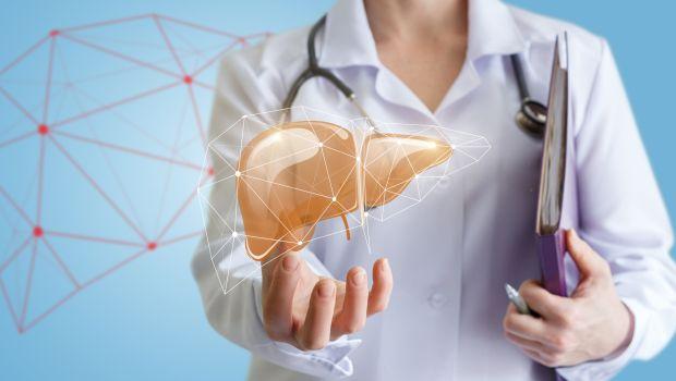 صورة الكبد liver enzymes