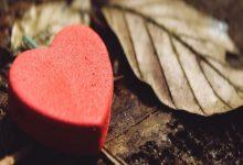 Photo of متلازمة الهروب من الحب