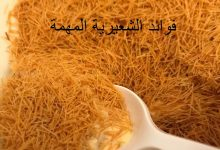 Photo of فوائد الشعيرية