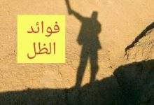 Photo of فوائد الظل