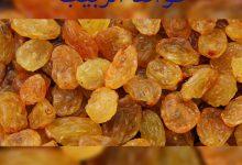 Photo of فوائد الزبيب