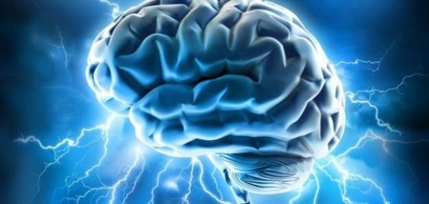 أغذية لتقوية الدماغ