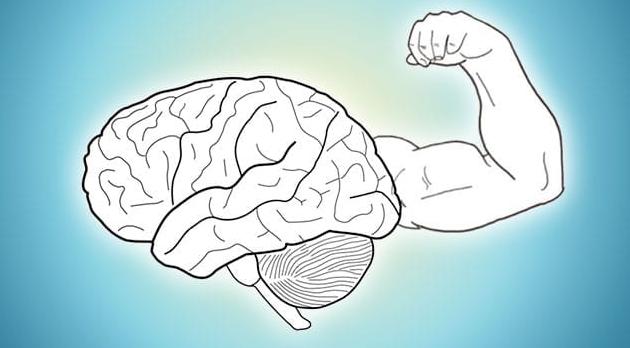 الدماغ هو احدى الأعضاء الفعالة والنشطة جداً في جسم الأنسان