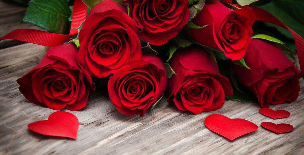 الورد الاحمر