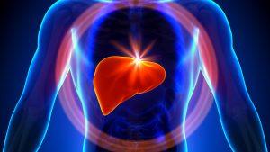 علاج تليف الكبد بالاعشاب