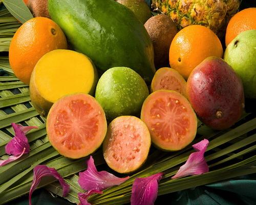 فوائد الجوافة لصحة