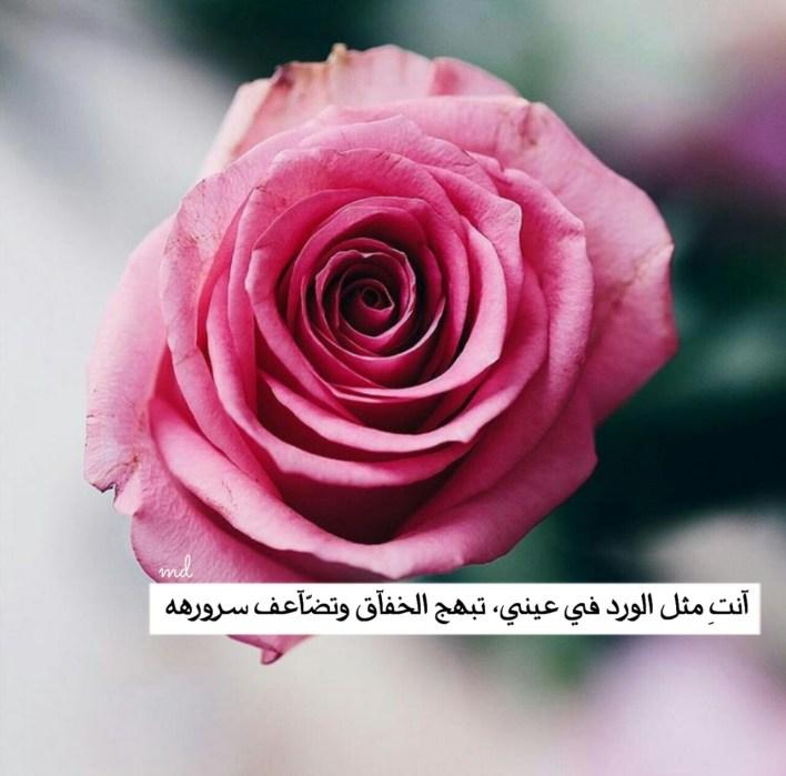 قوس أكاديمي البراز عبارات شكر عن الهدايا Comertinsaat Com