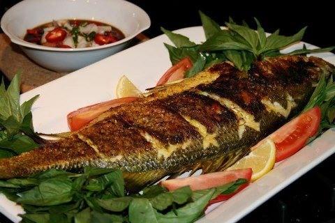 افضل مطاعم الاسماك في المدينة المنورة .