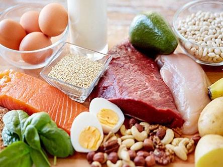 الأطعمة عالية البروتين